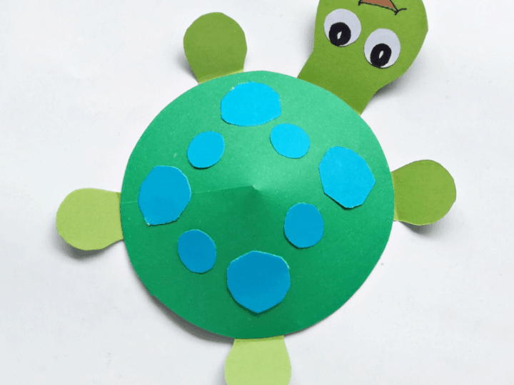 Preschool Turtle Craft