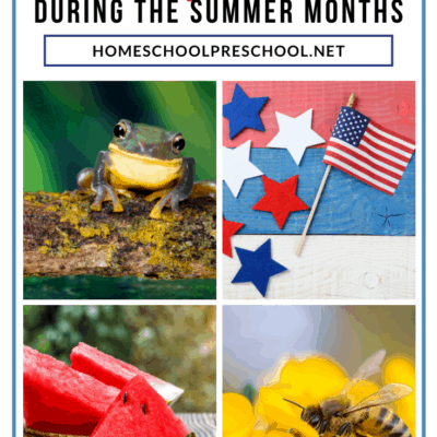 Fun Things to Learn During the Summer