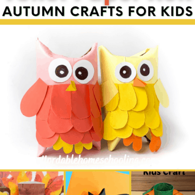 Toilet Paper Roll Fall Crafts