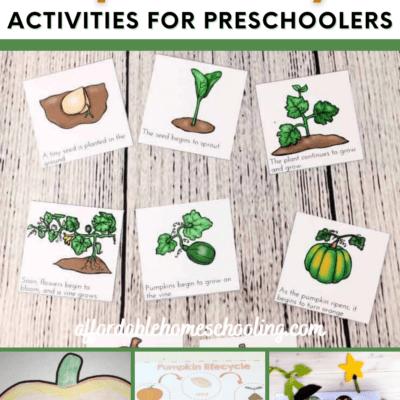 Pumpkin Life Cycle Preschool Activities
